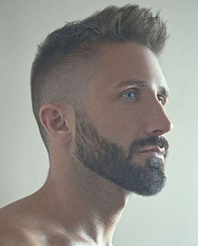 Superb 1000 Ideas About Beard Styles On Pinterest Beards Awesome Short Hairstyles Gunalazisus