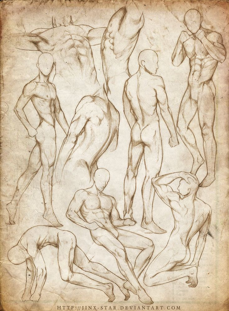 +MALE BODY STUDY VII+ by jinx-star.deviantart.com on @deviantART