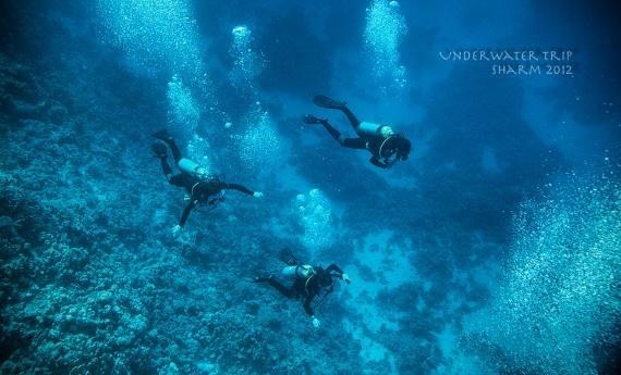 Underwater Trip