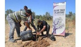 Telkomsel-ACT Hijausuburkan Kota Gaza