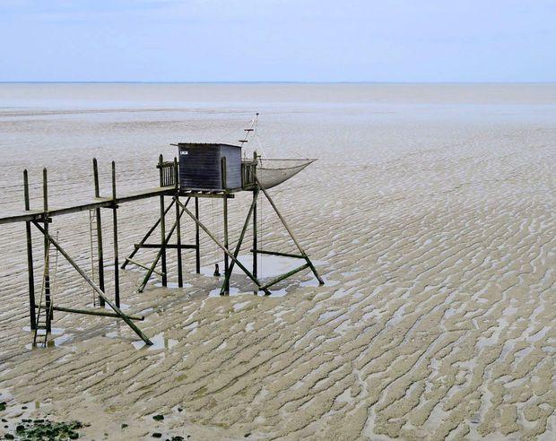 En Charente-Maritime, face à l'Atlantique   #carrelet #charentemaritime