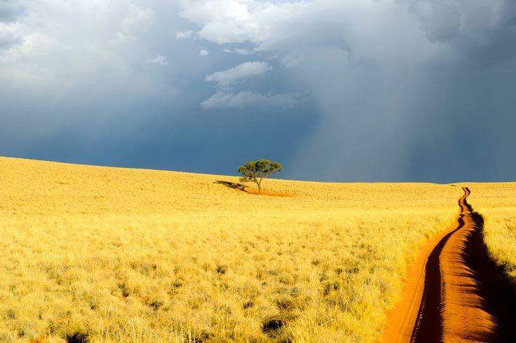 Roads of the Kalahari Desert by Vladlen Tsiskarishvili on 500px