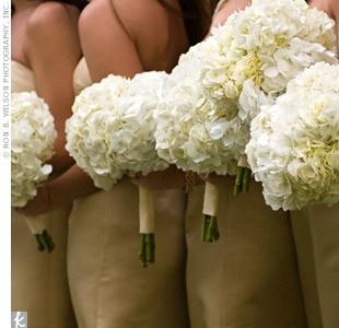 Hydrangeas!Bridesmaid Flower, Ideas, White Flower, Hydrangeas Bouquets, Colors, White Bouquets, Wedding Flower, Bridesmaid Bouquets, White Hydrangeas