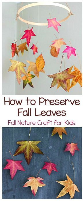 Two Ways to Preserve Fall Leaves: Fall Nature Craft and Science Activity for…