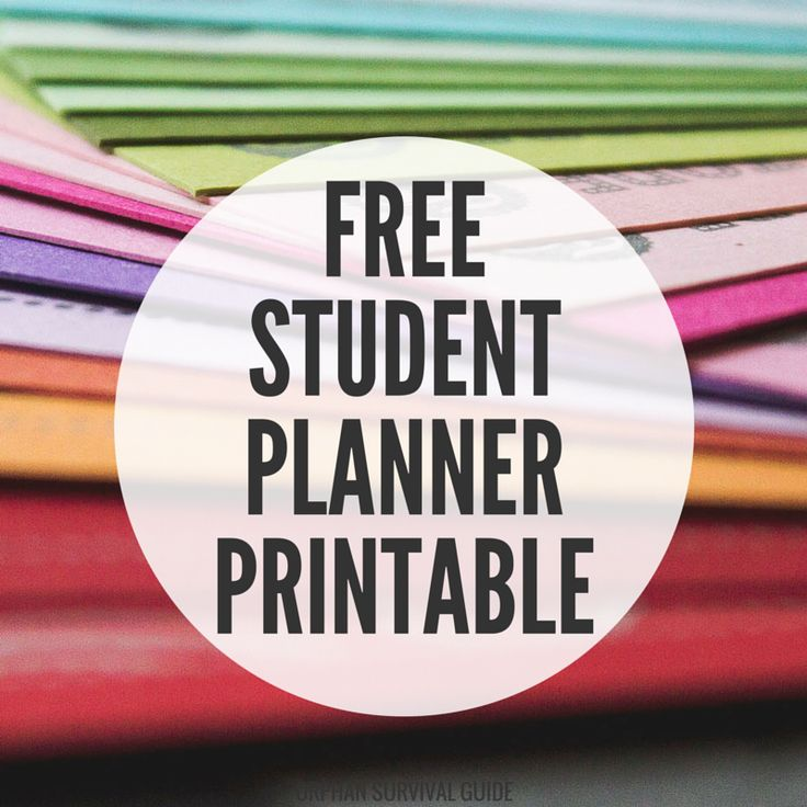 As a student with a lot on her plate, I need a planner that can help me keep track of everything. So I made a customizable printable planner set!