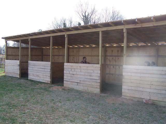 1153 best horses rodeo barn stuff images on pinterest for 4 stall barn designs