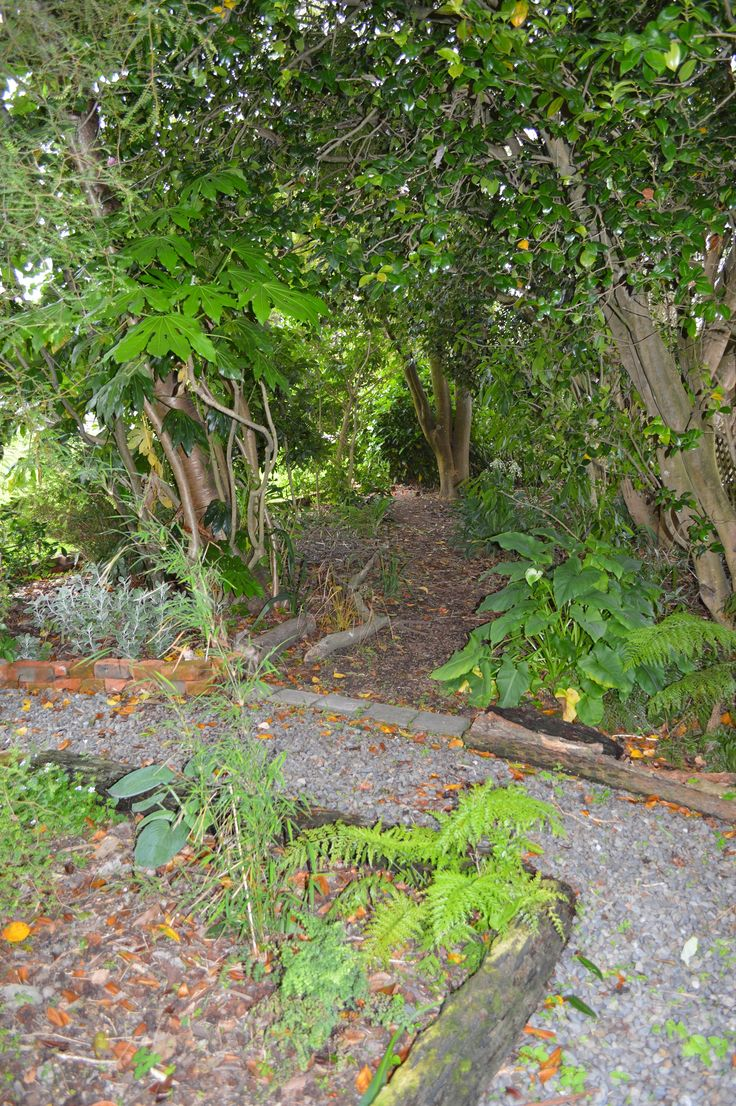 The garden at Studio 202 Levin NZ. Garden, studio and gallery of artist Ronda Turk.