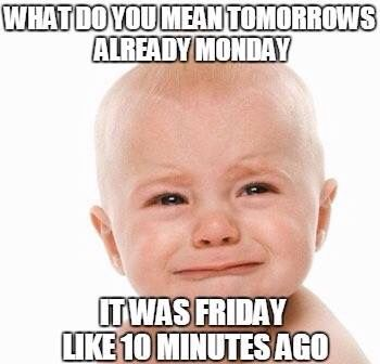 Image result for funny pictures about monday