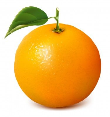 The orange is both a literal and symbolic embodiment of the sun, from whose light it is formed. As a whole food it irradiates us with a spectrum of healing properties, the most prominent of which some call vitamin C activity, but which is not reducible to the chemical skeleton known as 'ascorbic acid.' Science now confirms the orange has a broad range of medicinal properties, which is why the ancients knew it both as a food and a medicine.