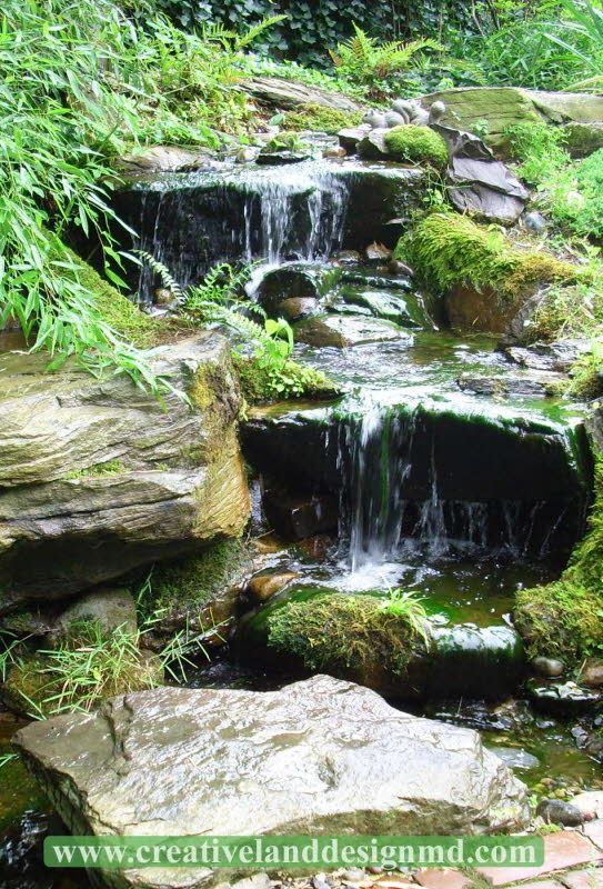 2812 best images about natural swimming pools ponds and for Pond stream design