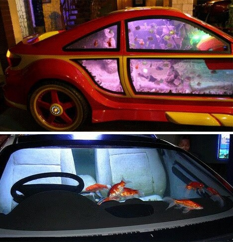 Need or want  a new aquarium? Don't trade in that old car.