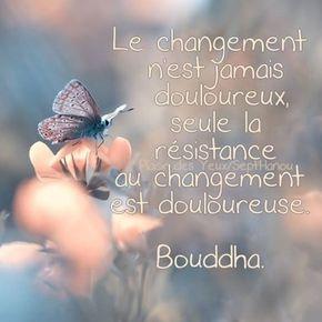 Le changement n'est jamais douloureux, seule la résistance au résistance est douloureuse