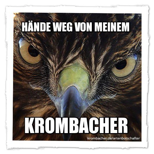 Werde Krombacher Arten-Botschafter. Arten schützen und dabei Spaß haben – einfach auf krombacher.de/artenbotschafter gehen, Motiv auswählen, Text eingeben und teilen.