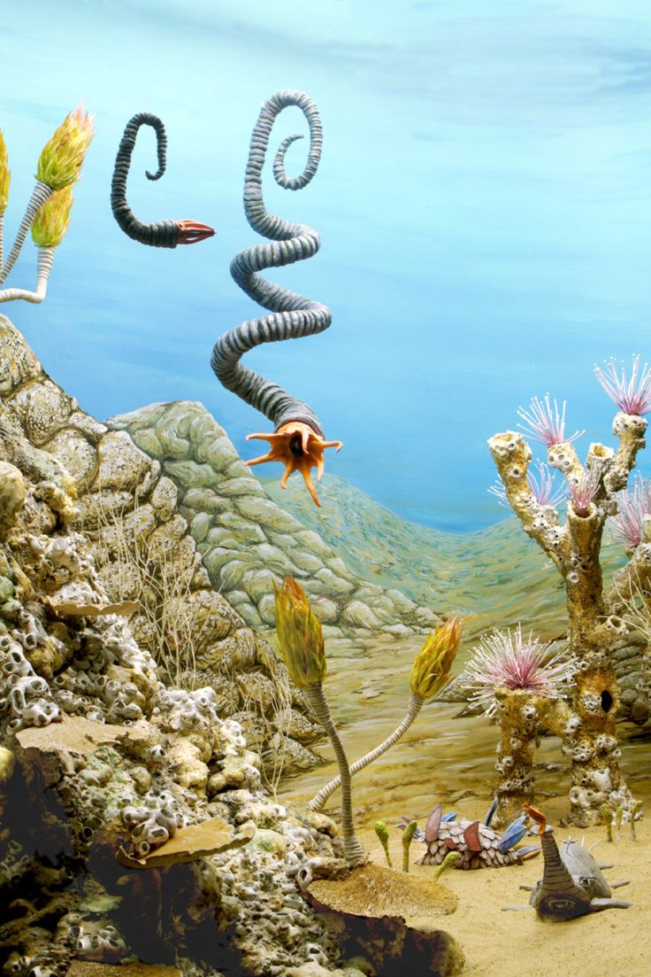 Life in the Seas I: The Cambrian (detail) by Eugene Parnell, 2005  —-  (urethane foam, epoxy resin,  recycled glass, plant fibers, pigment, found object)