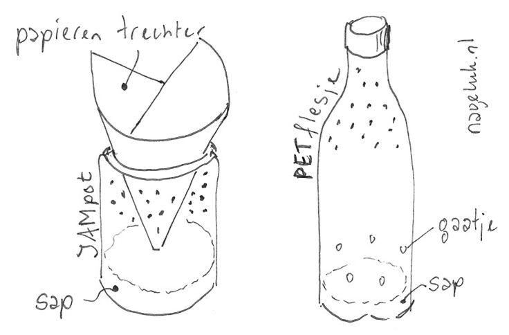 Hoe kom ik snel van fruitvliegjes af?