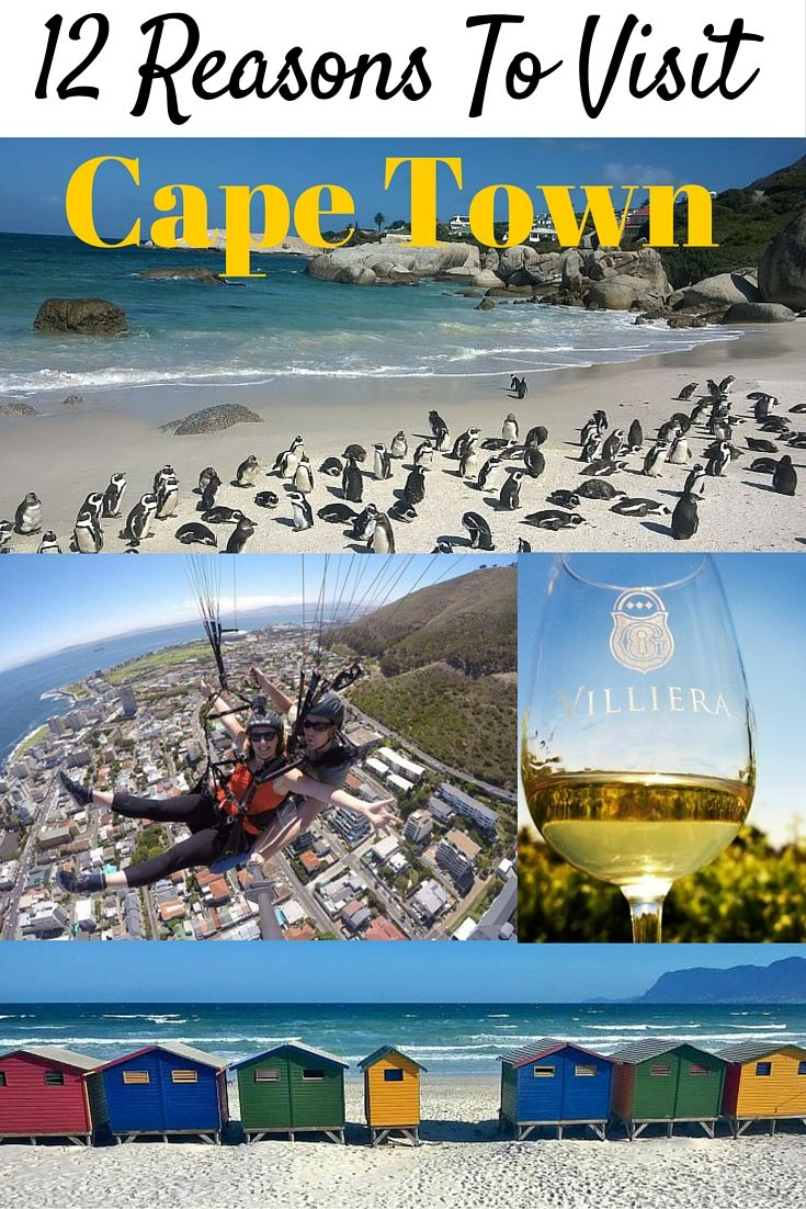 12 Reasons To Visit Cape Town in 2016!