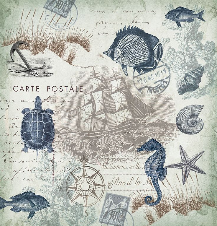 Nautical Shower Curtain, Seaside Postcard by Tre Sorelle