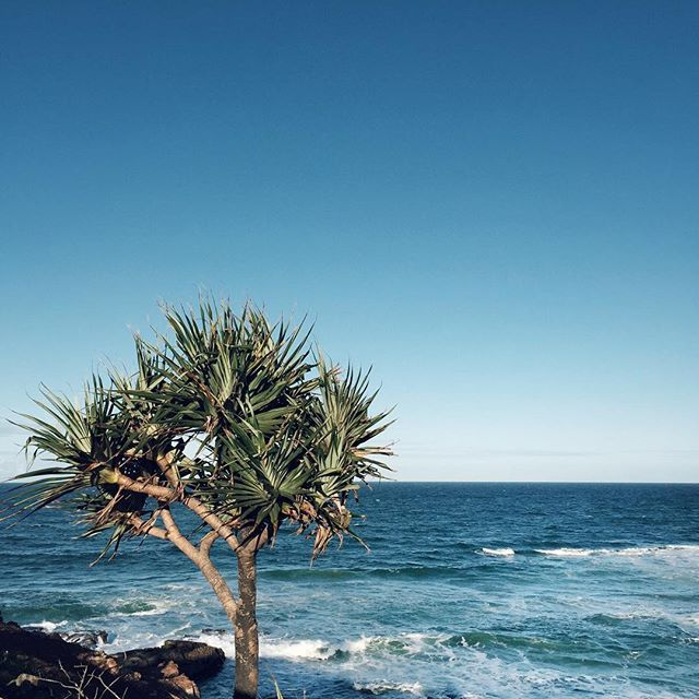 There's nothing better than enjoying a long weekend on the Sunny Coast!