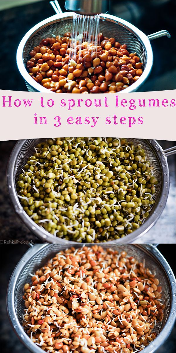 Howtosproutlegumes_pinterest