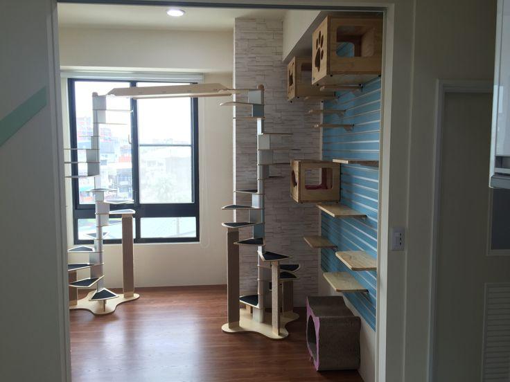 #Cat Spiral Staircase#cat furniture