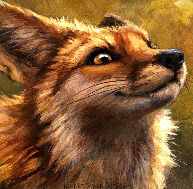 I'm A Fox And You Are Not by kenket