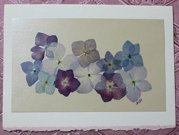 Pressed Flower Card Hydrangea Blank Card by prettypressedpetals, $4.75