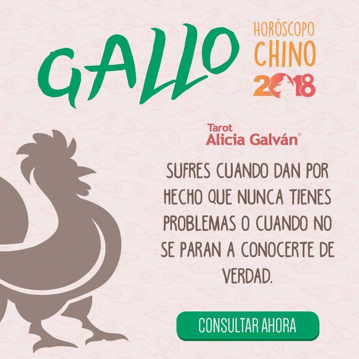 ¿Quieres saber qué te deparará el año nuevo chino? Descúbrelo aqui 👇🐶 #gallo #horóscopo #añodelperro