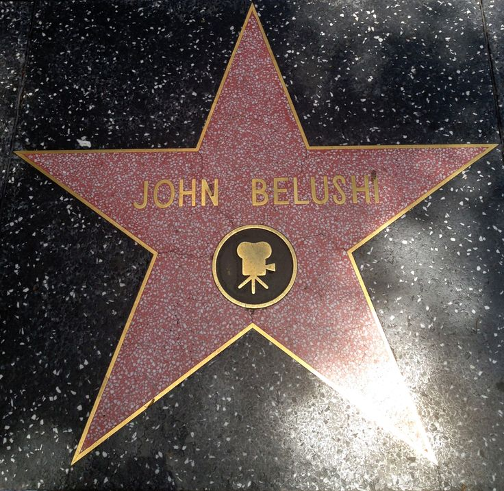 106 Miles To Chicago Blues Brothers Quote: 104 Best John Belushi ( Blues Brothers) Images On