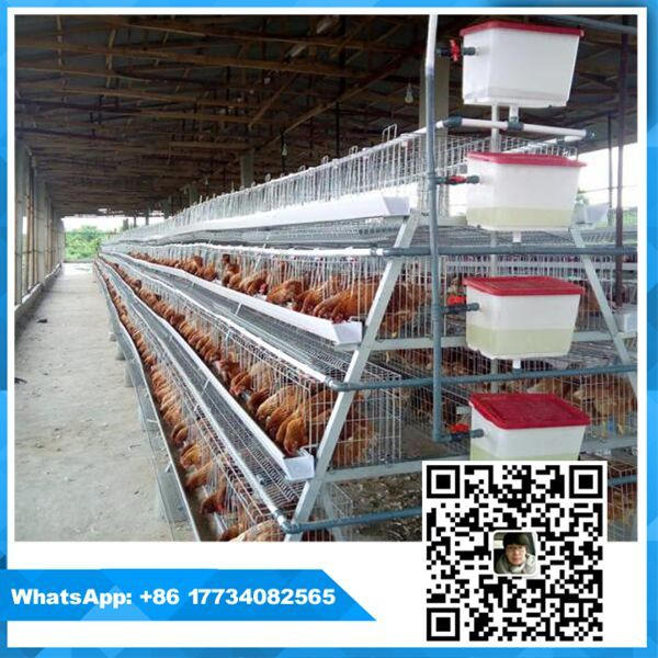 quality and durable capacity 160 birds chicken coops layer battery cage for poultry farming