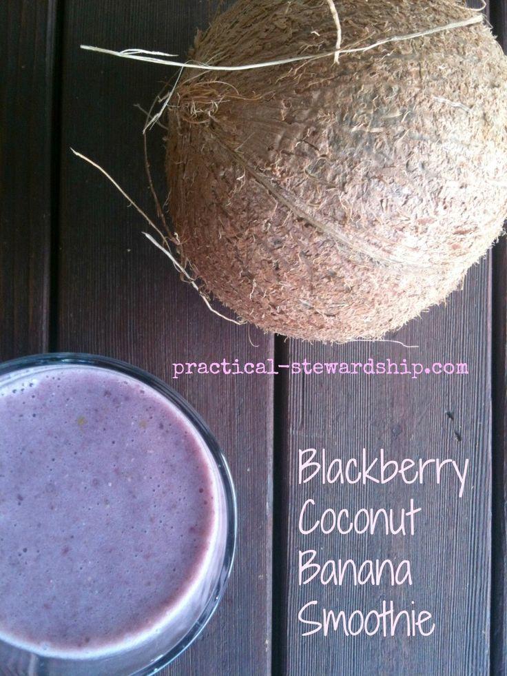 Blackberry Coconut Banana Smoothie – Alisha Bloom