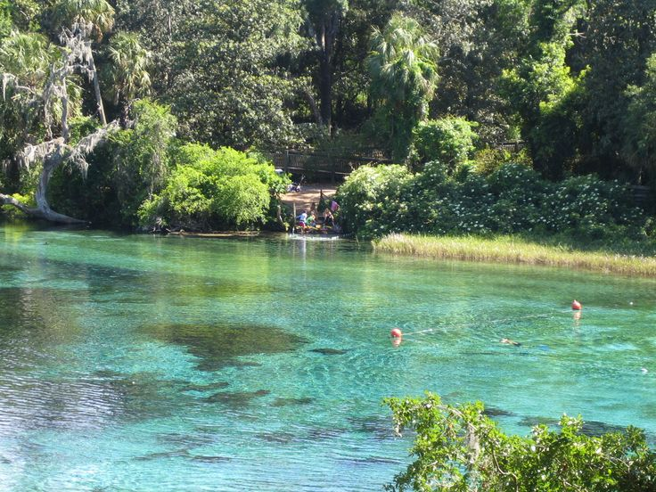 florida camping springs | Rainbow River on Florida's Nature Coast; courtesy of the shultzteam ...