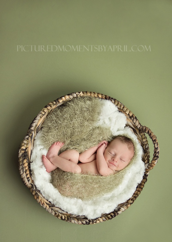 Newborn Photography Basket Size