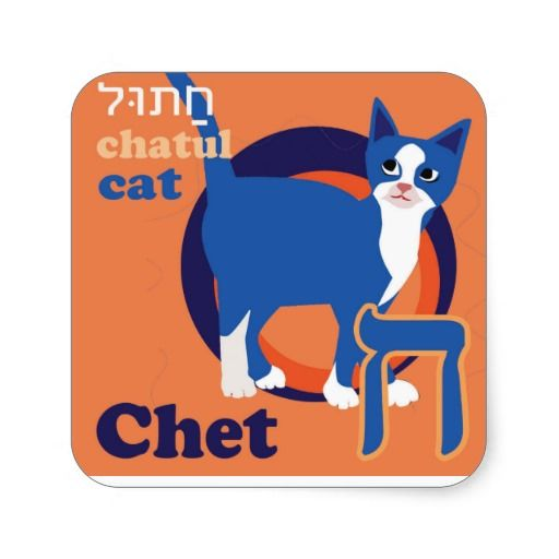 Hebrew Aleph-Bet Animal Stickers. One animal sticker for each letter of the hebrew aleph-bet. Chet-Chatul-Cat. Learning hebrew can be fun. Collect all 22.