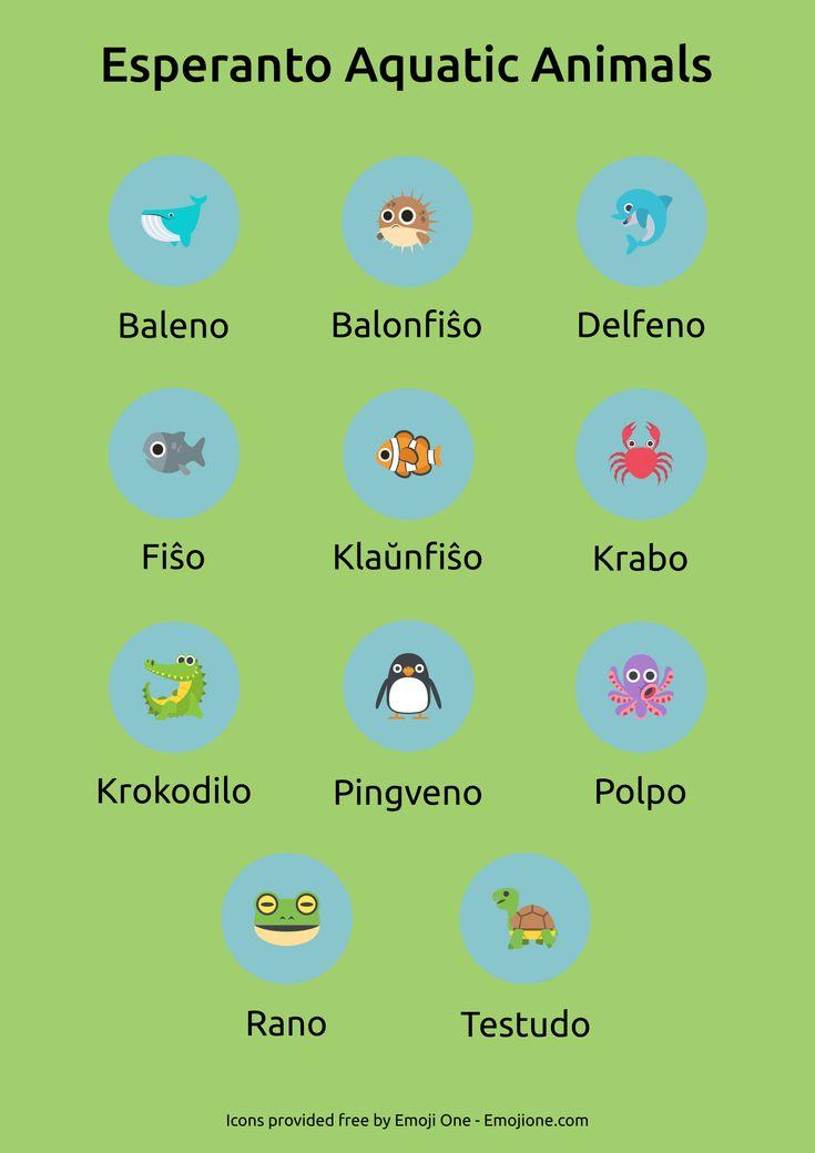 Esperanto aquatic animals                                                       …