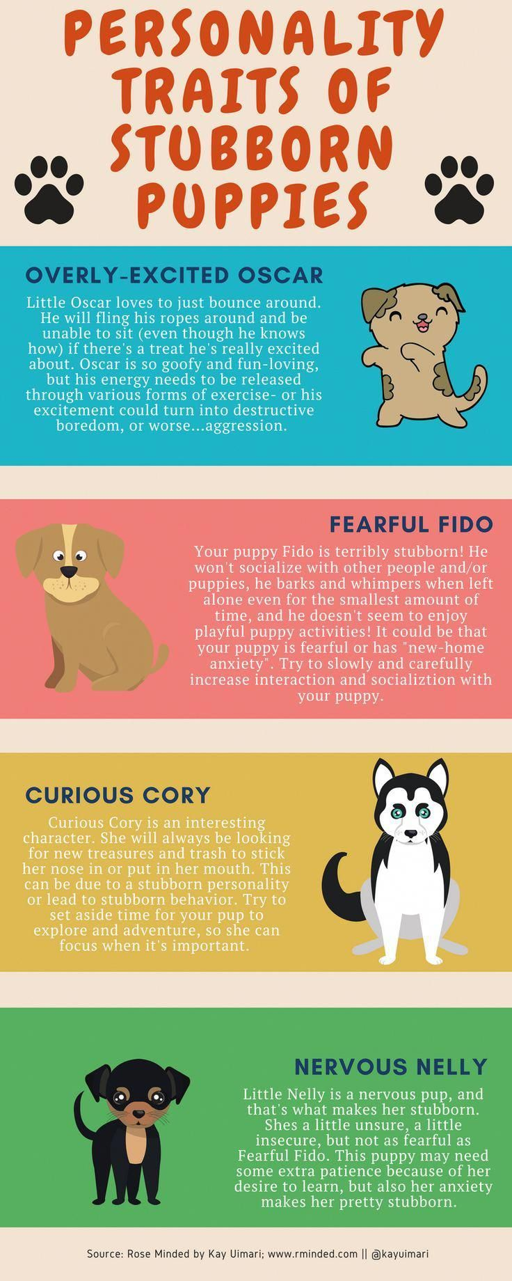 How To Successfully Raise Stubborn Puppies Via Kaufmannspuppy Dogtipsandtricks Puppy Training Dog Training Obedience Dog Behavior Problems