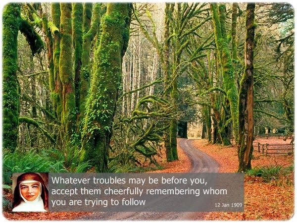 Whatever troubles may be before you, accept them cheerfully remembering whom you are trying to follow