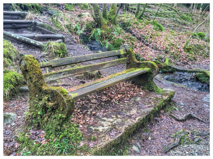 Old Bench. Ambleside, waterfall bank