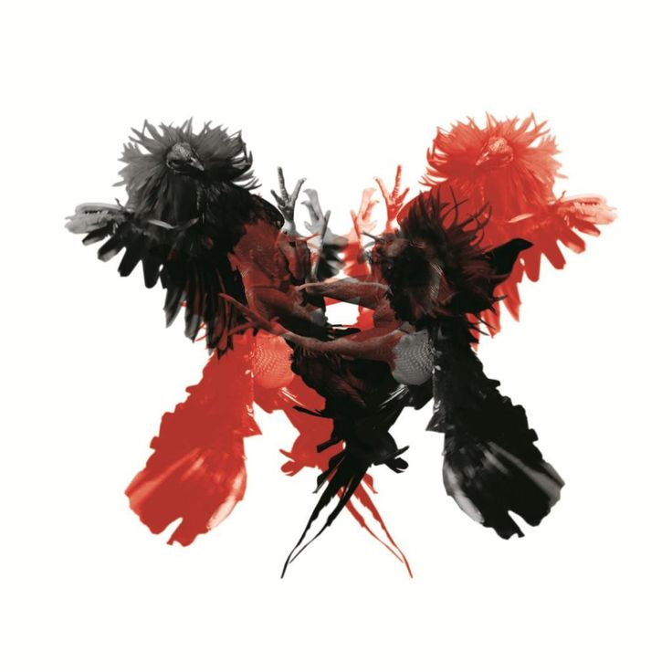 Kings Of Leon - Only By The Night (2LP 180 Gram Import)