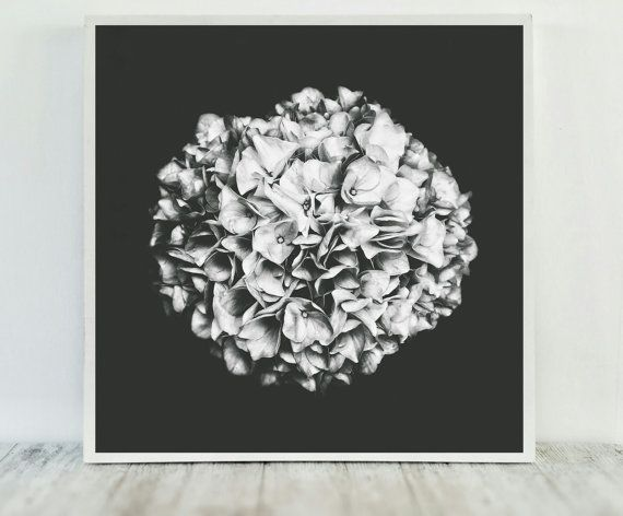 Dark Wall Art For Sale (Hydrangea Picture) to Decorate your Home
