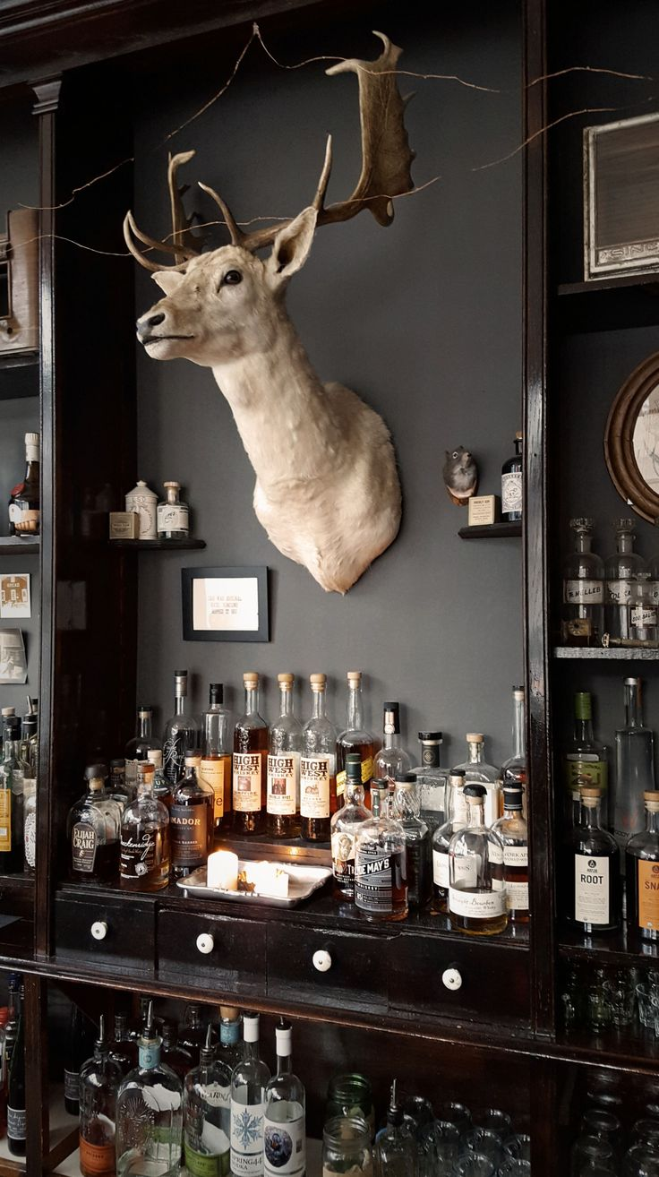"womaninthewoods: ""forestlore: "" DRAM Apothecary in Silver Plume, CO This is the most unique and cozy bar nestled right up against a steep mountain face. "" @thegreatnorthwest """