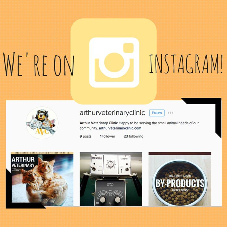 We're on instagram! Follow us for more #vetlife sharing.