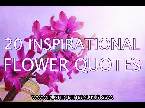 Positive and inspirational flower quotes http://www.positivethesaurus.com/2015/06/100-positive-quotes-about-flowers-what.html #PositiveSaurus #FlowerQuotes #Video
