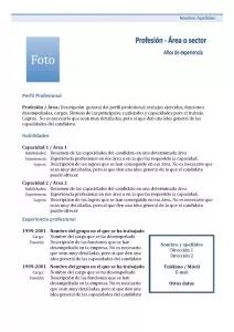 Currículum Vitae Funcional: Combinado 1