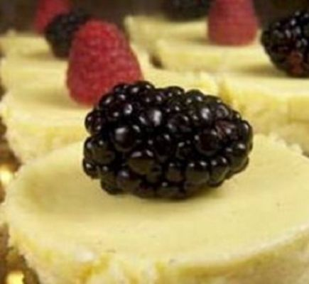 This cheesecake recipe is low on carbs and also healthy enough for diabetics!  This cheesecake recipe will help you stay faithful to your diabetes meal plan. Rich and decadent, ricotta cheese and reduced-fat cream cheese keep this cheesecake recipe part of a healthy eating plan. Here's an easy, diabetic-friendly low-carb dessert anyone can make …