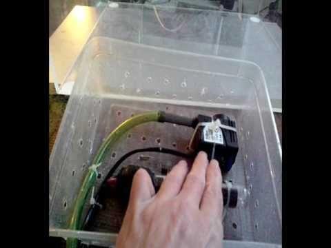 montage d un  paludarium pour dendrobates .. a ma façon ..