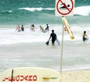 Australie: un requin bondit sur la planche d'un surfeur