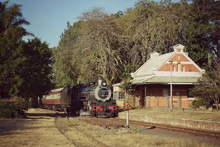 Botha's Hill Station.  Photo Greg Hart