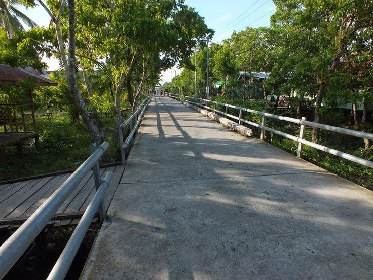 Kota Agats Papua, Menariknya Kota Apung di Atas Papan  - Papua
