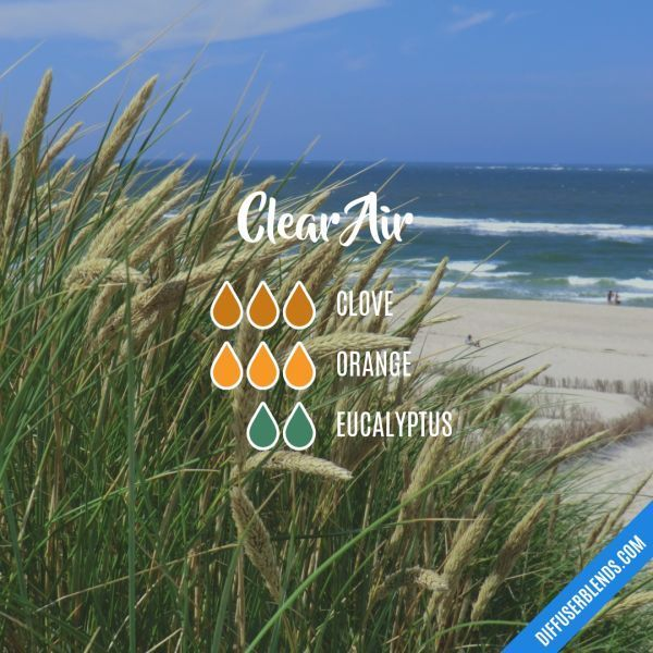 Clear Air - Essential Oil Diffuser Blend #Essentialoildiffusers