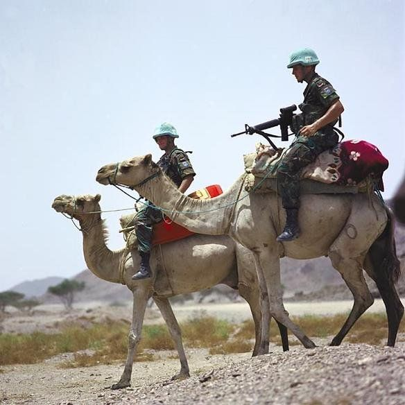 Centuries old means of transport cannot be ignored easily. Here, United Nations soldiers, part of the United Nations Mission in Ethiopia and Eritrea, monitoring the Eritrea–Ethiopia boundary from atop their camels (2005). In terms of sheer endurance and cross country capability, the camel would hold each own every time against motorized transport.